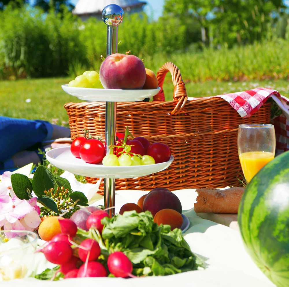 Picknick_Elbauenpark2